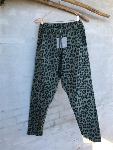 Cabana Living 16089-Baggy Pant - CL Jeans - Leo Green